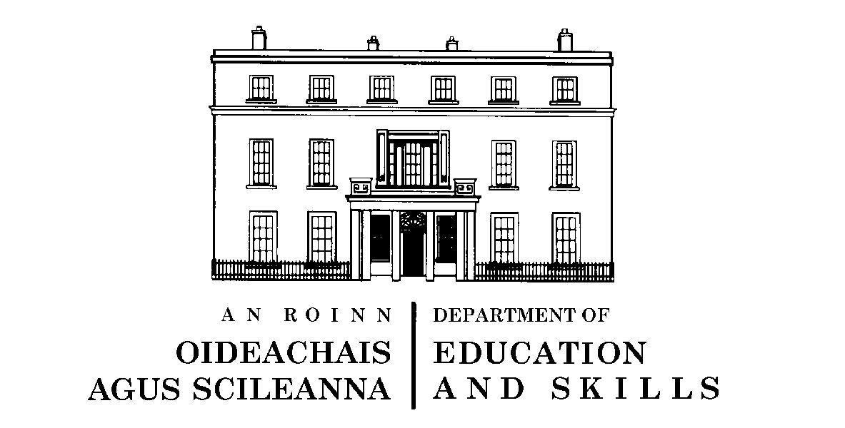 Review of Findings from The Department of Education and Skills (DES)